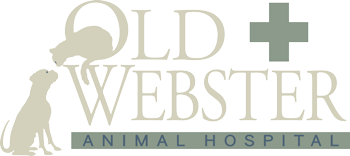Old Webster Animal Hospital